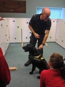 Dog Training Barnard Castle